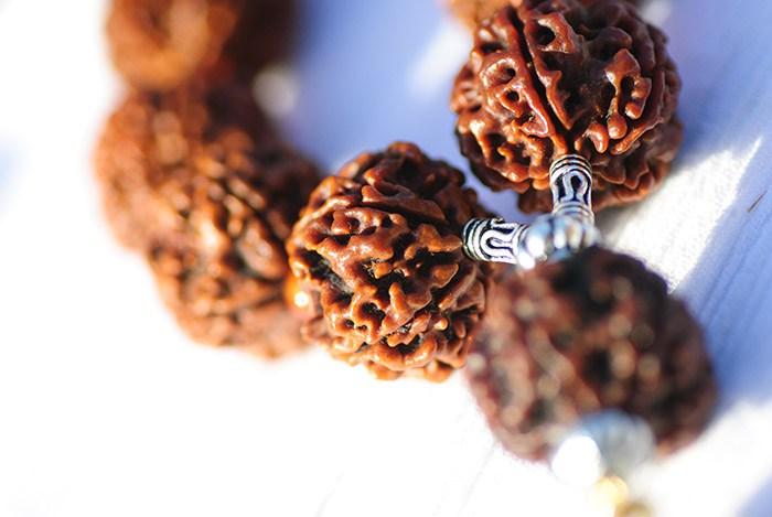 the amazing power of rudraksha Rudraksha is a beautiful power-packed bead which is full of energy this sacred bead is a symbol of spirituality, fearlessness and a source of power, [.